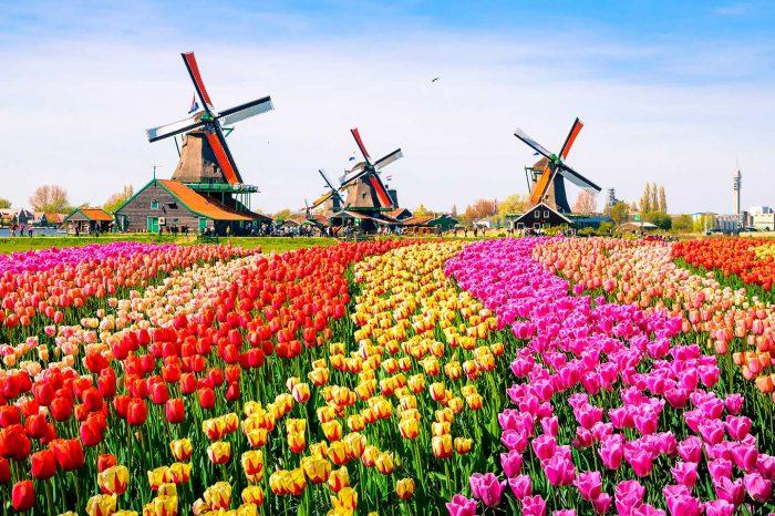 Vuela a Holanda desde 34€ trayecto