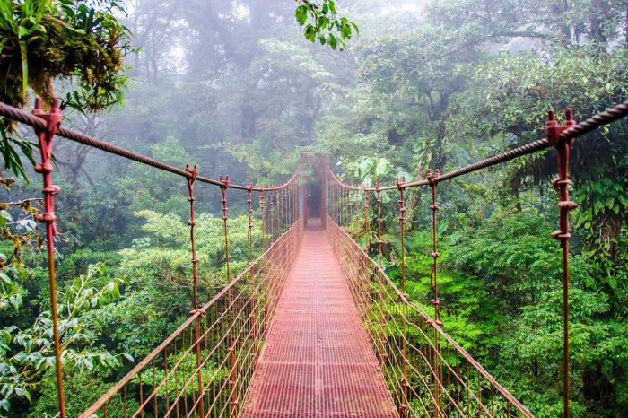 Vuela a Costa Rica (y Toronto) desde 239€ trayecto