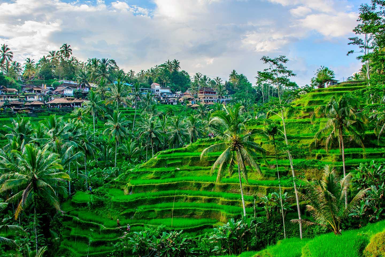¡WOW! Vuelos a Bali desde 229€ trayecto