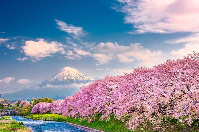 WOW! En San Valentín vuela a Japón (y París) desde 187€ trayecto